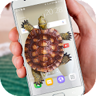 Turtle Walks in Phone joke icon