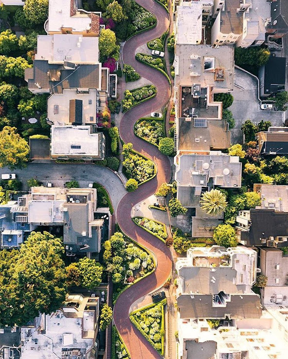 Aerial view of Lombard Street.