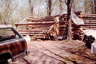 Photo: Spring 1994.  Skidding logs up onto the wall.