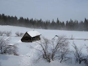 Photo: 21.Pomiędzy wierzchołkami Lubania jest Polana Wierch Lubania z wiatą.