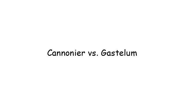 UFC : Cannonier vs. Gastelum