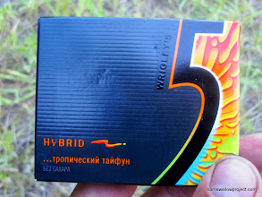 Photo: The official gum of our trip.