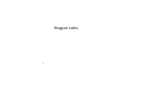 Rogue Labs Flash