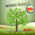Word Teaser Pro - BrainTeasers icon
