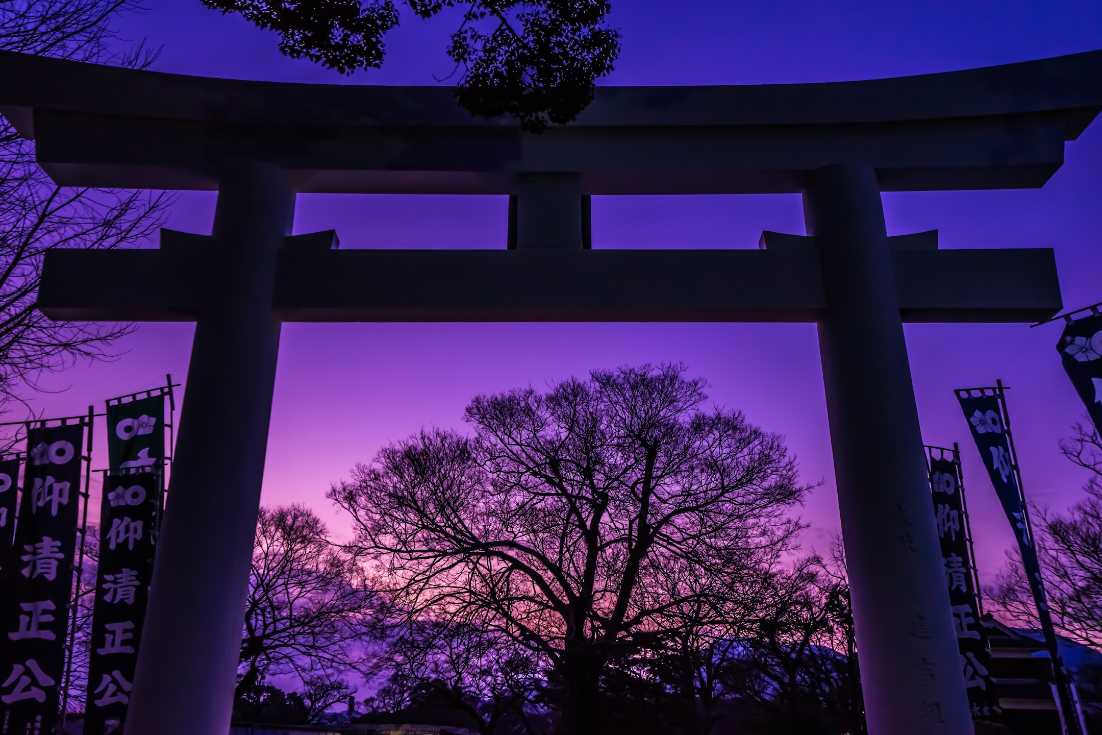 Kumamoto Castle Kato Shrine Torii gate2