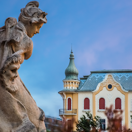 Oradea by Alecu Gabriel - Buildings & Architecture Statues & Monuments ( romania, oradea )