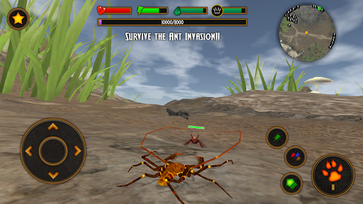 Life of Phrynus - Whip Spider screenshot 7
