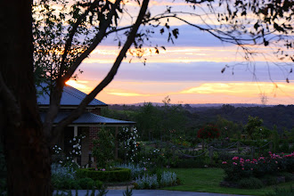 Photo: Year 2 Day 140 - Sun Set in the Yarra Valley Countryside