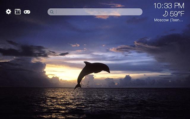 Dolphins HD new free tab theme