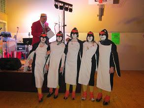 Photo: Die Pinguine von Madagascar