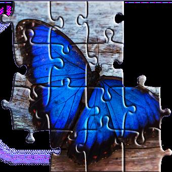 Jigsaw Puzzles: Animals