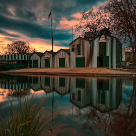 Christchurch by Gordon Koh - Buildings & Architecture Other Exteriors
