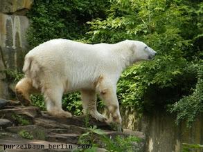 Photo: Die Umgebung muss natuerlich auch im Auge behalten werden ;-)