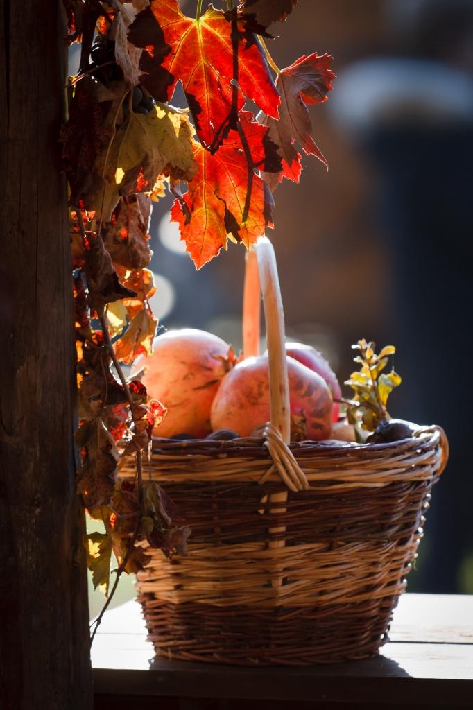 Frutti di stagione di MicheleFaggian