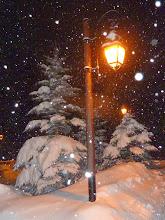Photo: Still snowing