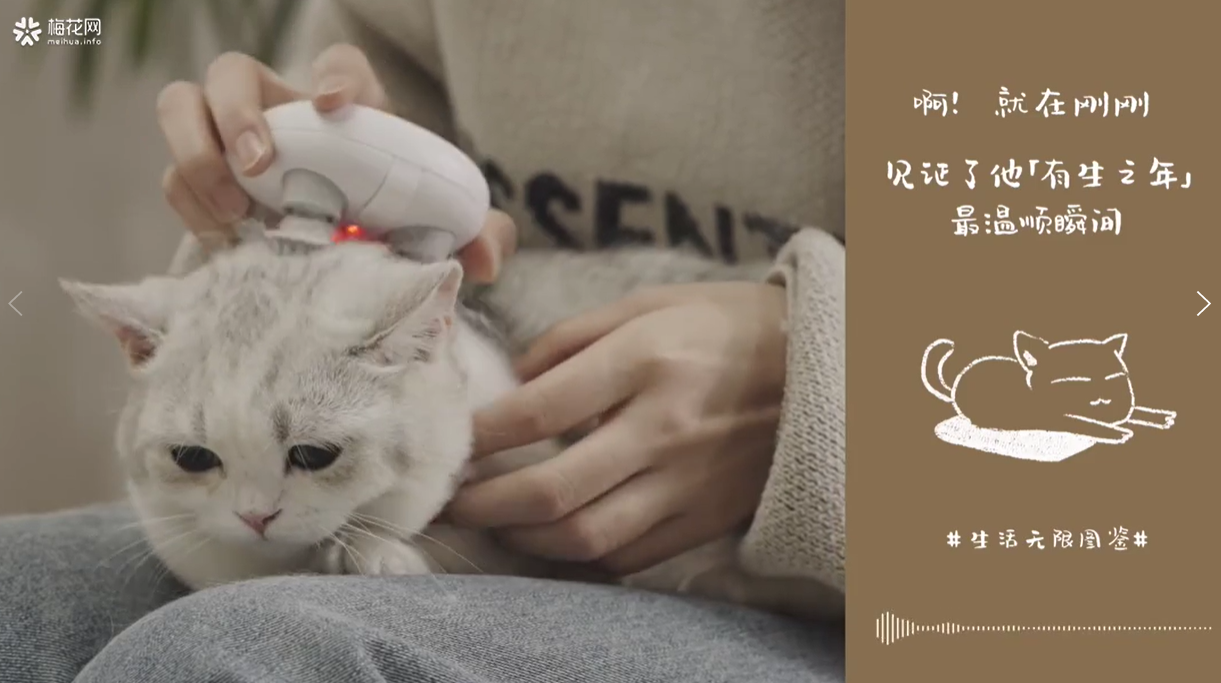 Purring cats, fragrant tea and other sounds featured in NetEase Yanxuan's successful ASMR spring campaign