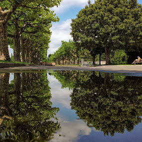 The Puddle Of Hope by Jessica Meckmann - Instagram & Mobile iPhone ( reflection, puddle, iphone, landscape )