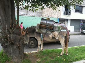 Photo: Sustainable Kerosene truck.