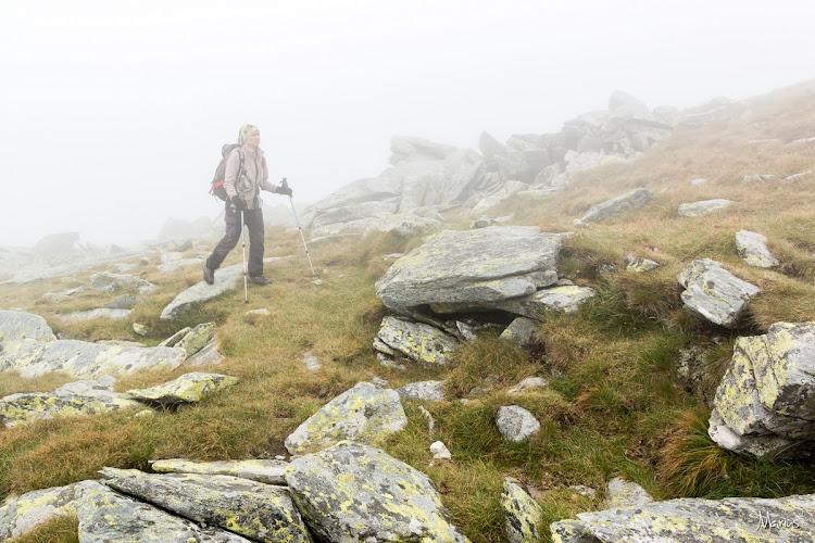 Prin ceaţă spre Setea Mare, foto Marius