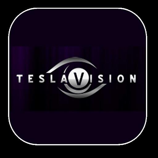 TeslaVision