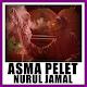 Download Asma pelet nurul jamal For PC Windows and Mac