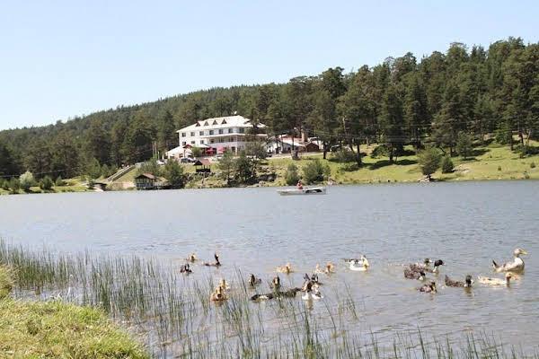 Hotel Gol Evi