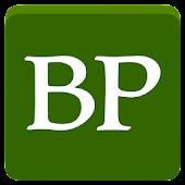 Bemidji Pioneer Now