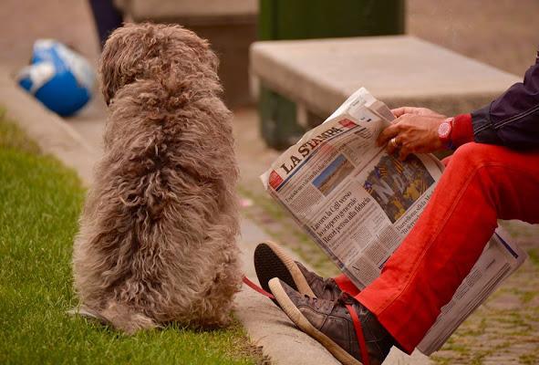 al mattino si legge e si ascolta  di @ugogiphoto
