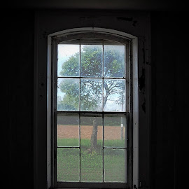 Window by Donna Davis Kasubeck - Buildings & Architecture Decaying & Abandoned (  )