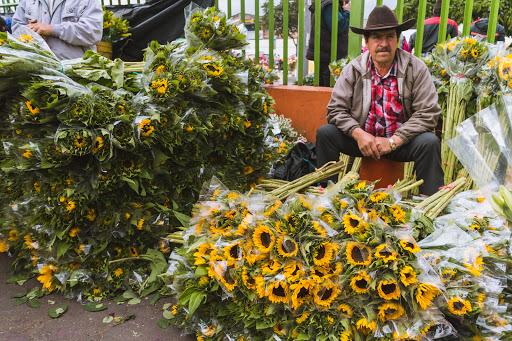 Bogota_Colombia_Flower_Market_City_Tour