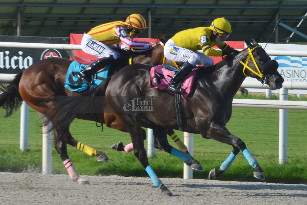 Shy Fund (Fund of Funds) brilla en Condicional (1000m-Pasto-MAR). - Staff ElTurf.com
