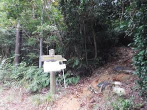 サザエガ岳登山口(巡視路入口)