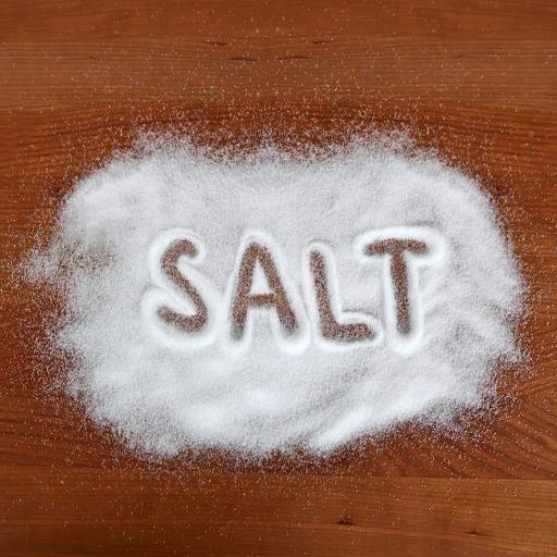 SALT Soulwinning app