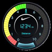 Accelerometer Gauge