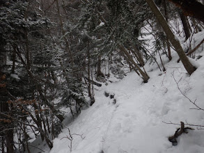 10cmほどの積雪に