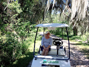"""Photo: You don't have to """"rough it"""" to enjoy the back-country here....a rented golf card on civilized trails works :)."""