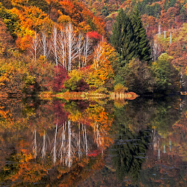 by Estislav Ploshtakov - Landscapes Waterscapes