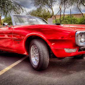 501 by CEBImagery .com - Transportation Automobiles ( car, spots, red, automobile, ss, convertible, classic )