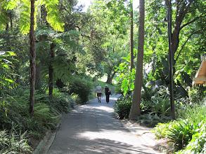 Photo: Royal Botanic Gardens in Melbourne
