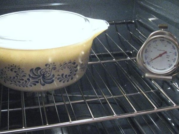 Place bowl in the oven with the oven light ON and leave it there...