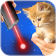 Laser for cats (game)