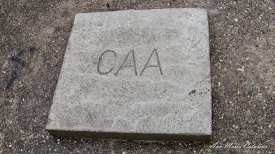 Photo: Calea Victoriei - Brand CAA - 2014.12.08