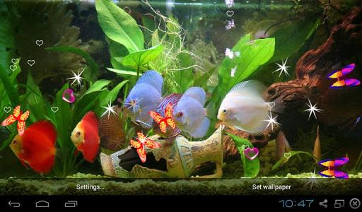 3D Discus Aquarium LWP