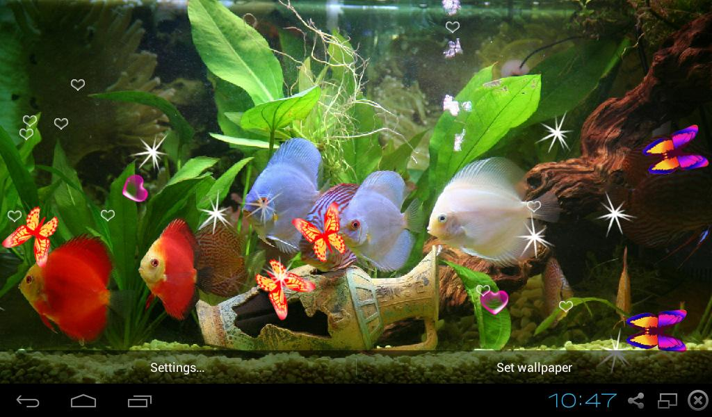 3d Discus Aquarium Live Wallpapers Android Apps On