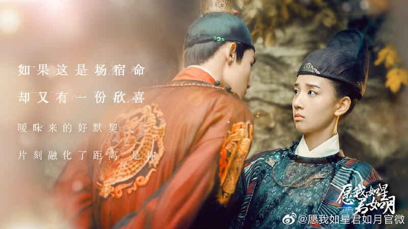 Oops! The King is in Love China Web Drama