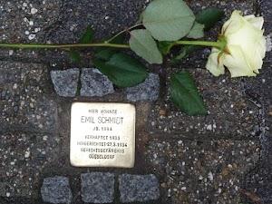 Stolperstein im Pflaster, daneben weiße Rose.