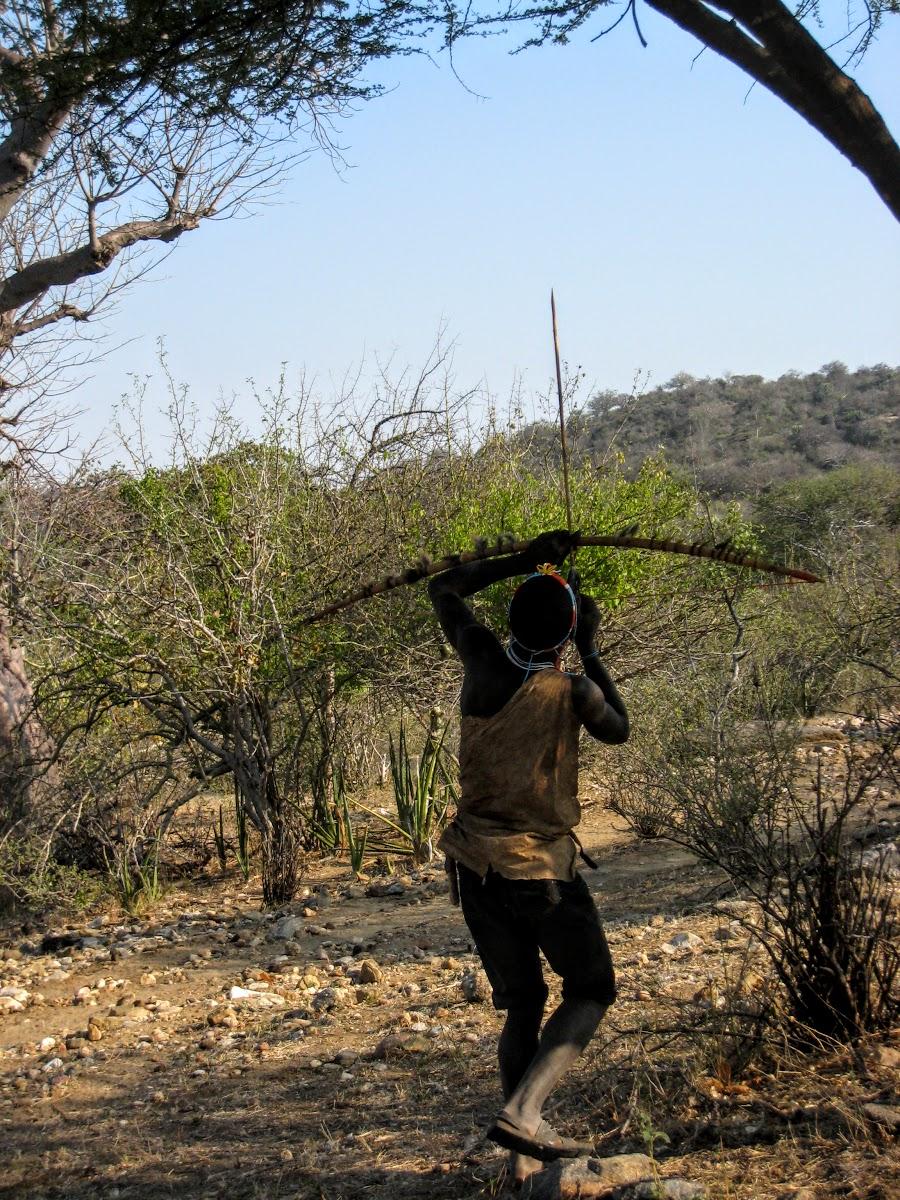 Hunter shooting the bird in the tree