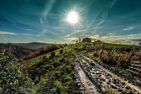 solstizio sulla collina di massimo bertozzi