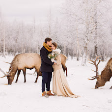 Wedding photographer Alena Polonskaya (AlenaPolonskay). Photo of 14.12.2015