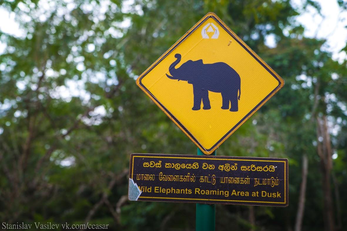Дорожные знаки Шри-Ланки
